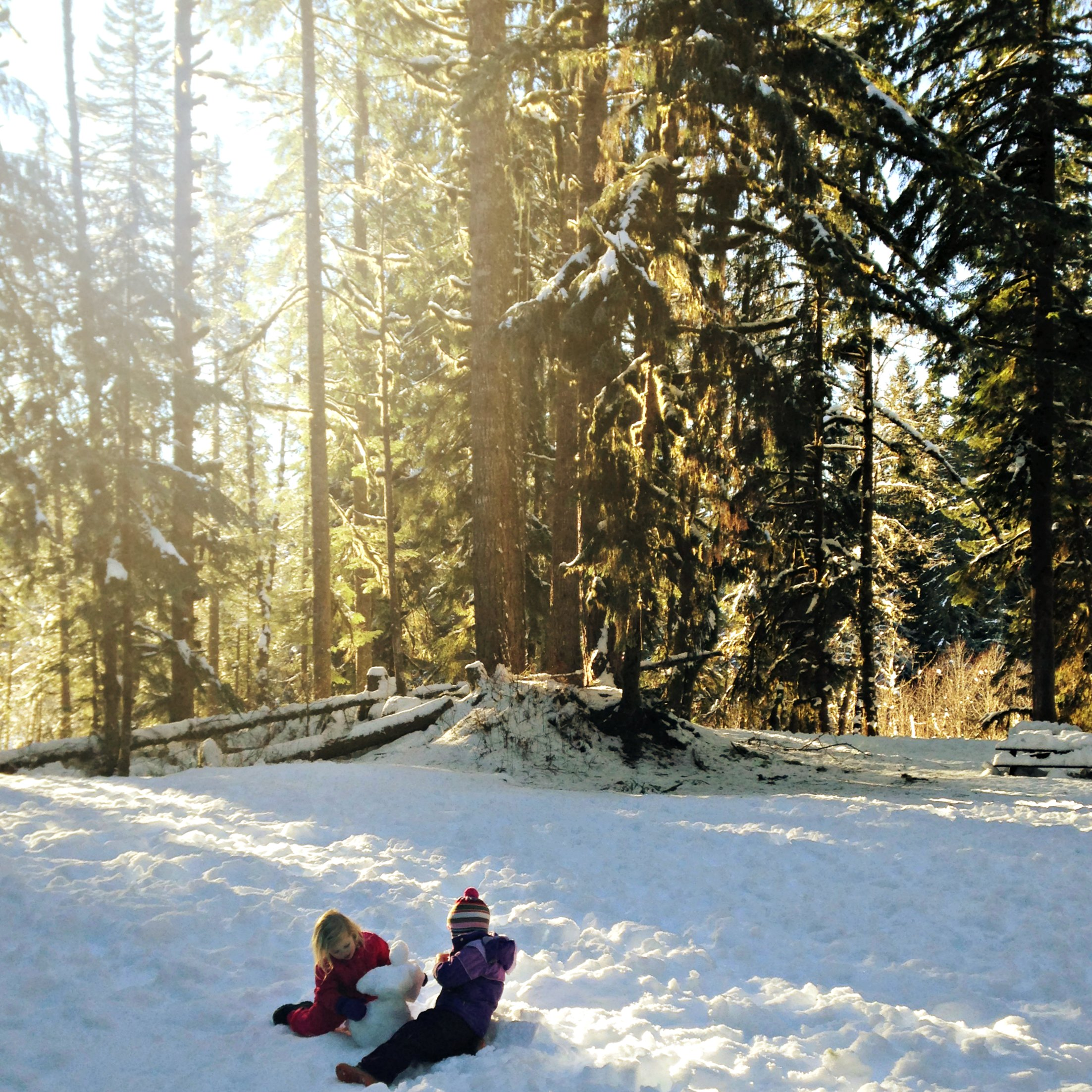 Fun Places to go for Free Sledding – Northwest Healthy Mama