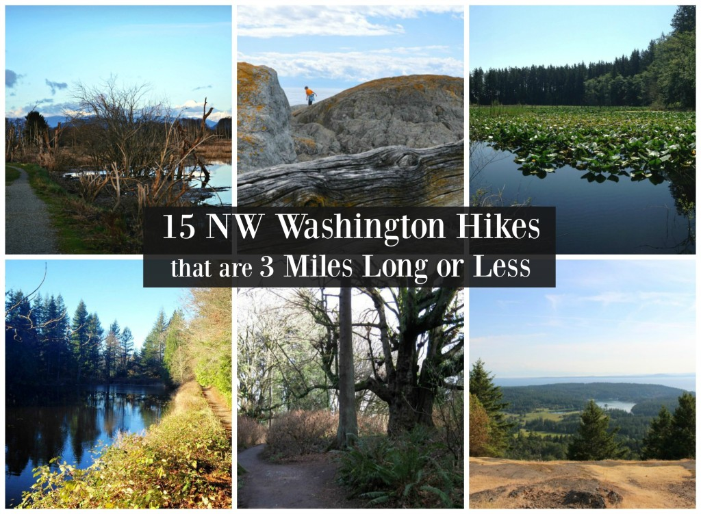 15 NW Washington Hikes that are 3 Miles Long or Less