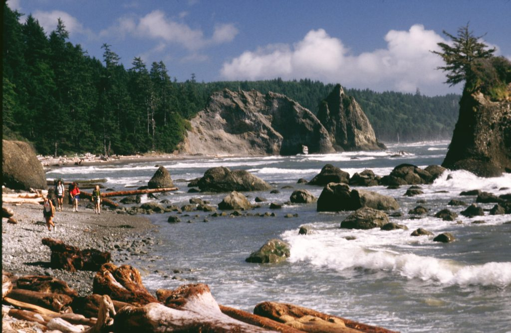 Photo credit: http://www.olympicpeninsula.org/things-to-do/extraordinary-shi-shi-beach