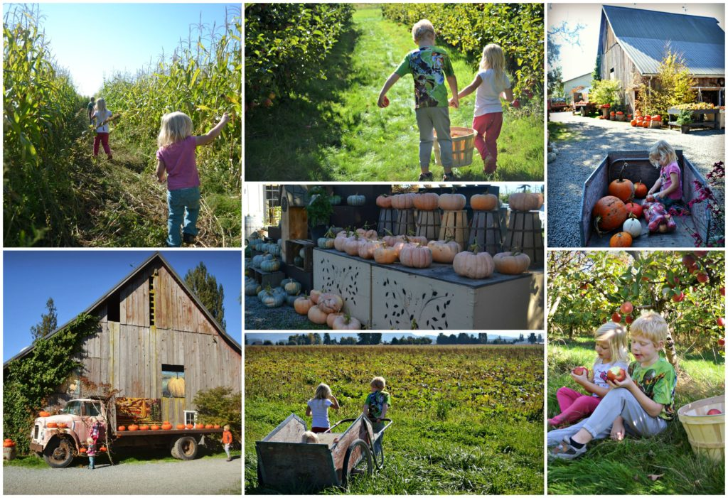 gordon-farms-collage