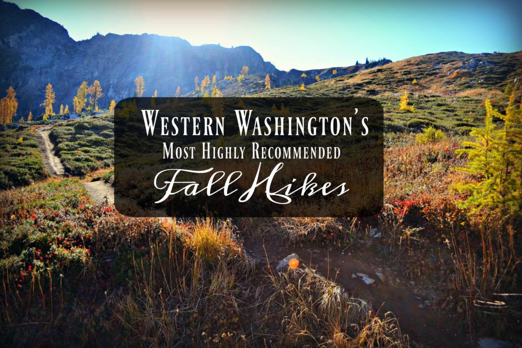 Western Washington's Most Highly Recommended Fall Hikes