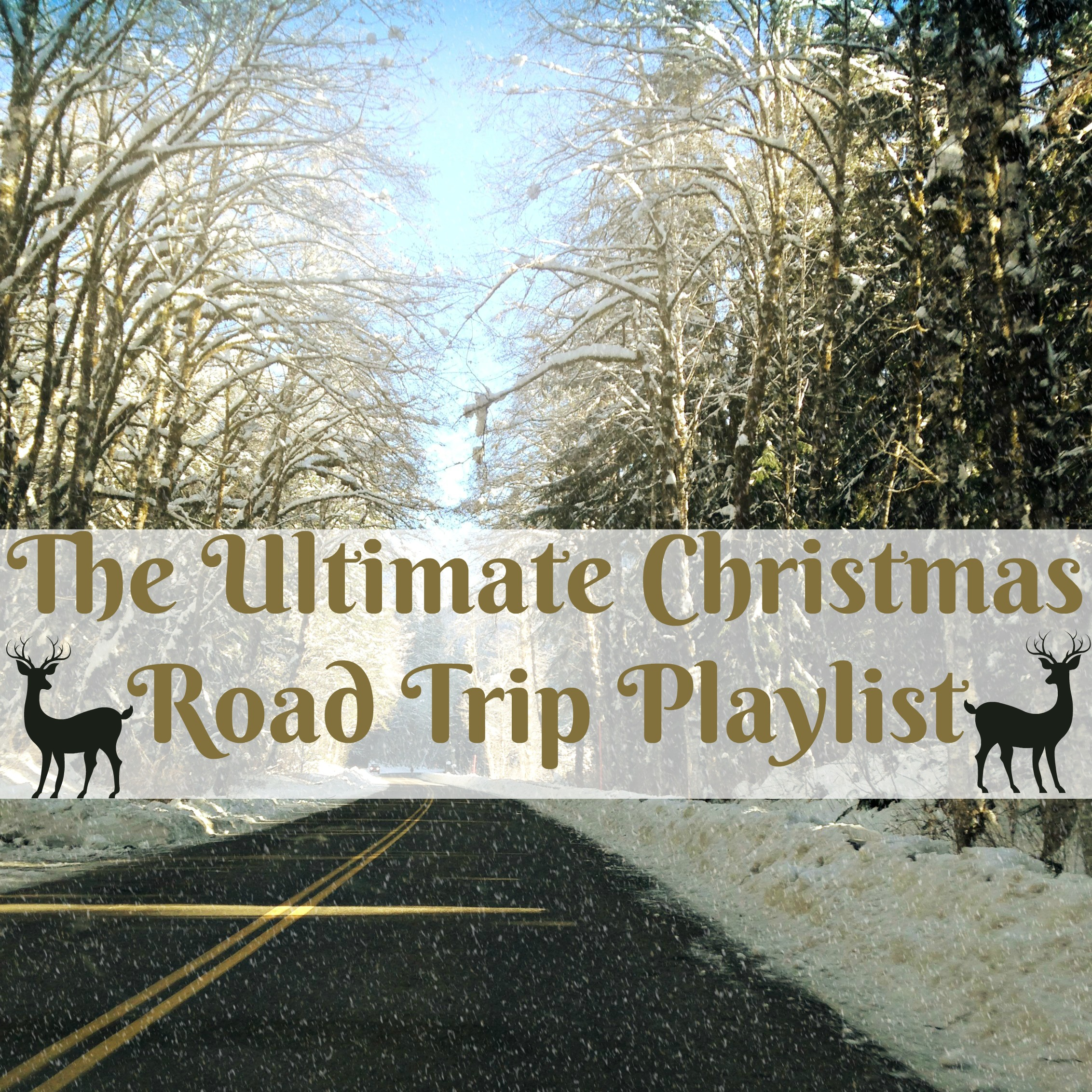 The Ultimate Christmas Road Trip Playlist – Northwest Healthy Mama