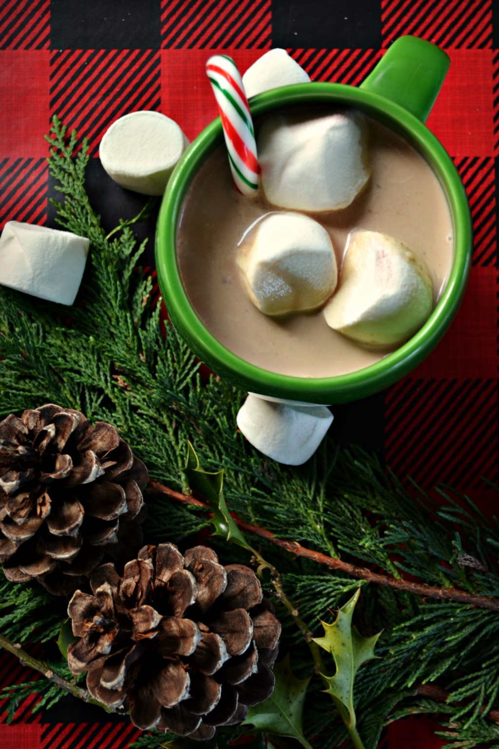 Decadently Rich Crockpot Hot Chocolate – Northwest Healthy Mama